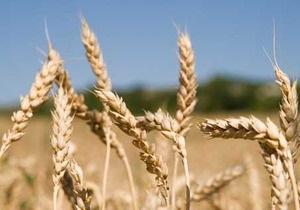 Мировые цены на пшеницу начали снижаться