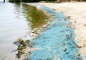 На пляжах в Конча-Заспе обнаружили опасные химикаты