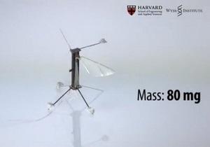 Робот-пчела: мягкий взлет, жесткая посадка
