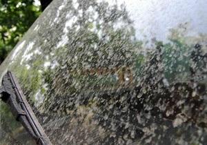 В Ужгороде выпал оранжевый дождь