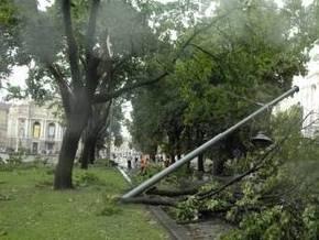 В Украине 131 населенный пункт обесточен из-за непогоды