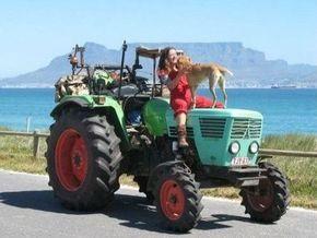 Голландка доехала на тракторе от Нидерландов до ЮАР