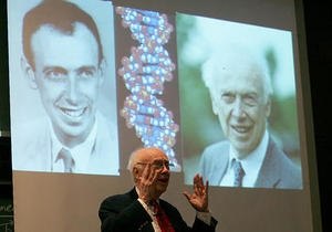 ДНК - открытие ДНК - Уотсон и Крик: 60 лет назад журнал Nature сообщил об открытии структуры ДНК