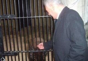 СМИ: Экс-мэр Киева намерен забрать медведей из зоопарка