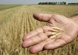 Украина ввела экспортные пошлины на зерно