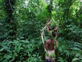 Из-за влияния человека начали расширяться тропики