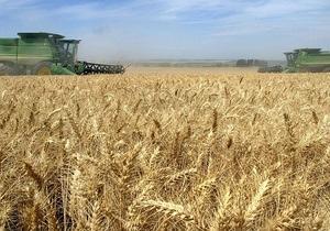 Сельхозпроизводство в Украине в 2012 году сократилось на 4,5% - Госстат - пшеница - ячмень - овес