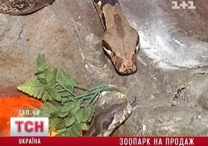 В Киевском зоопарке отрицают факт продажи животных в частные руки