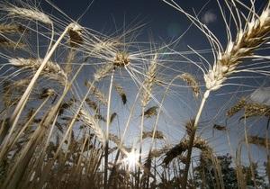 Украина в этом году будет мировым лидером по экспорту ячменя