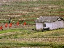 В Северной Корее электричество добывают с помощью велосипедов
