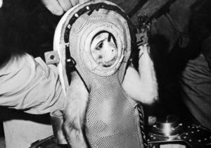 Иран запустил в космос ракету с обезьяной
