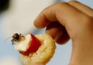 В канадском инсектариуме посетителей кормят скорпионами и червями