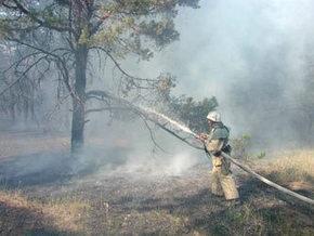 В Житомирской области шестой день гасят торфяные пожары