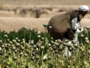 В Афганистане сожгли на костре девять тонн наркотиков