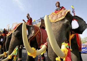 В Таиланде на церемонии с участием премьер-министра слон затоптал человека