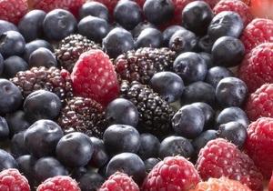 Беларусь - ягоды - леса - Беларусь запретила украинцам собирать в своих лесах ягоды до осени