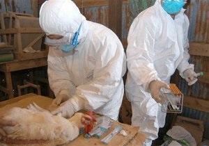 Новости Китая - птичий грипп: В Шанхае уничтожили более 20 тысяч птиц из-за вируса гриппа H7N9