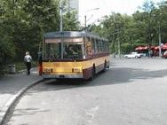 Во Львове бастуют водители трамваев и троллейбусов
