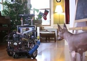 Инженер Microsoft построил робота для игры со своей собакой