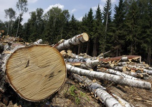Навальному предъявили окончательное обвинение по делу хищения лесопродукции