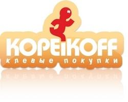 Интернет-аукцион Копейкофф становится магазином