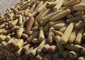 Кабмин может снять квоты на экспорт кукурузы
