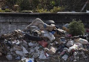 Медовый месяц для израильской пары начался на мусорной свалке