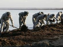 В Крыму начали утилизировать мазутную смесь, собранную после осенних кораблекрушений
