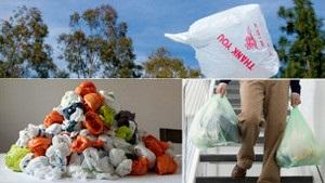 Би-би-си: Как Европе не увязнуть в горах пластиковых пакетов?