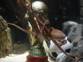 В акваріумі восьминога Пола встановили копію Кубка світу