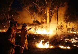Из-за пожаров в пригородах Сиднея эвакуируют тысячи человек, зафиксированы случаи мародерства