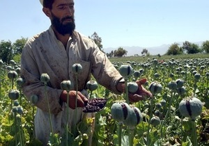 В Афганистане в рядах офицеров разведки выявили 65 наркоманов