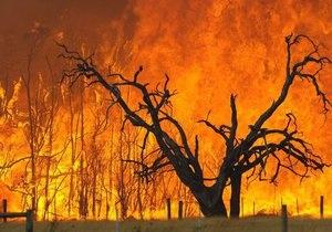 Австралия - В Австралии бушуют лесные пожары: уничтожены не меньше 100 домов, есть погибшие