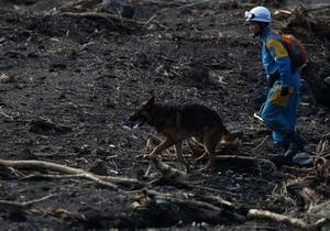 На Фукусиме после тайфуна уровень радиации превысил норму в 30 раз