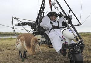 Журавль, летавший с Путиным, временно живет с петухами и курицами