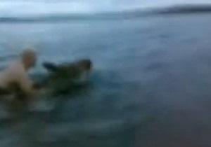 Новости Канады - странные новости - новости о животных: Жителей Канады оштрафовали за катание на лосихе