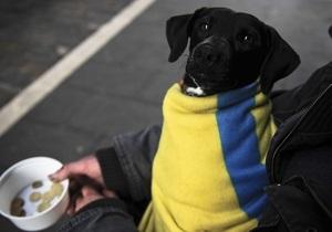 Экспертов охватил пессимизм относительно экономики Украины в 2013 - рецессия - бюджет украины - ввп украины