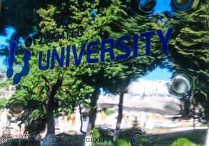 Титаны IT-рынка открывают в Украине бесплатный университет для воспитания потенциальных работников - bionic university
