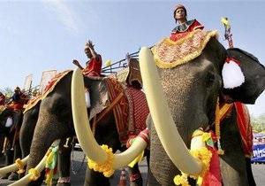 Властям Таиланда угрожают демонстрацией со слонами
