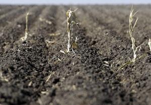 Аренда земли - Украинские аграрии - Новости Китая - Аграрии уточнили, как Украина может превратиться в  китайскую ферму