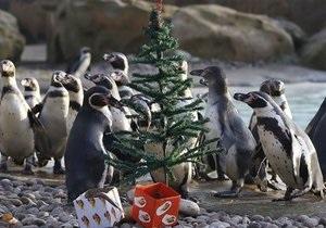 Новости США: В Детройте появится гигантский вольер для пингвинов