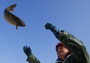 Новости науки - химоружие: Затопленное в Балтийском море химоружие приводит к мутации флоры - ученые