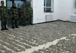Китайские таможенники перехватили крупную партию рогов антилоп