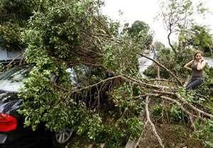 Стихия в Москве. Ураганный ветер повалил десятки деревьев, есть жертвы