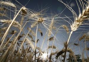 Рекордный урожай в Украине вытащит экономику из рецессии - Reuters