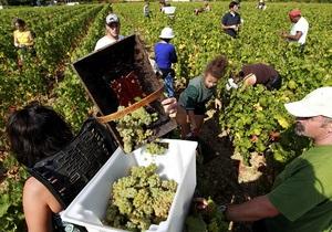 Франція - продажі виноградників - відмивання грошей
