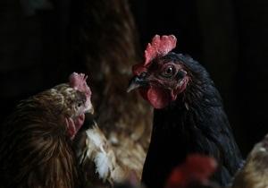 Крупнейший украинский агрохолдинг продал активы в США, понеся десятки миллионов убытков - Ъ