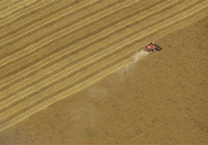 Соратник Мурсі попереджає про дефіцит імпортного зерна, основним постачальником якого є Україна