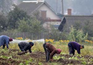 Бізнесмени Білорусі збирають підписи за вихід з Митного союзу - новини Білорусі - Митний союз