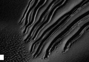 Марс - яри - лід